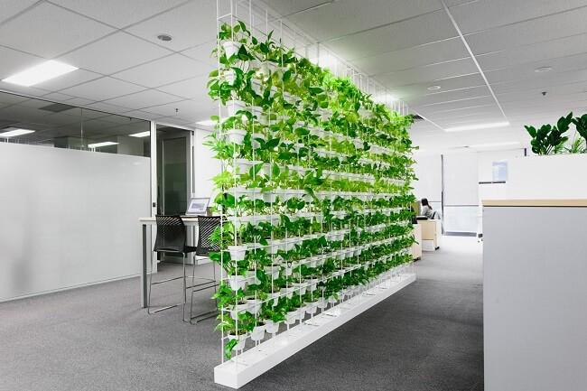 طراحی و ساخت دیوار سبز