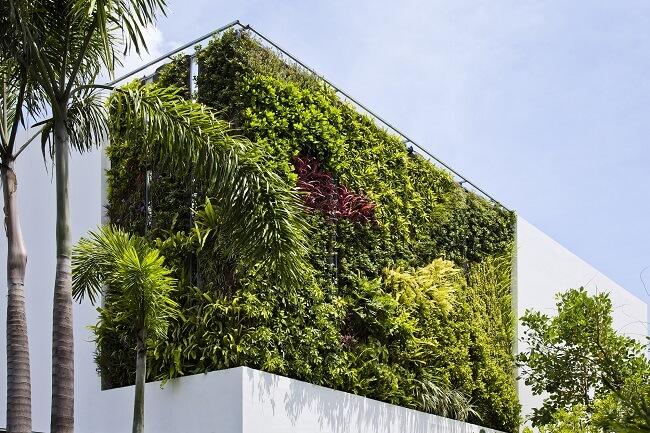 طراحی و پیاده سازی دیوار سبز